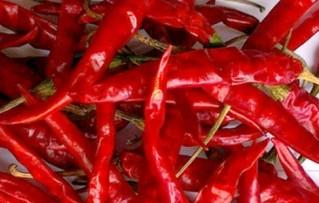 dry red chilli supplier in guntur